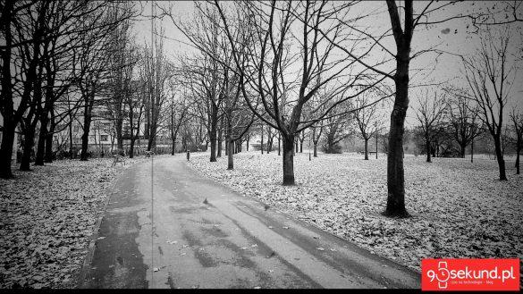 Zdjęcie z gotowym filtrem wykonane Sony Xperią XZ1 - recenzja 90sekund.pl